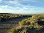 Friday evening we took one of the dirt roads toward Mono Lake to watch for Nighthawks flying.
